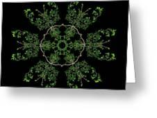 Pinwheel II Greeting Card