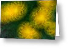 Pirouetting Dandelions Greeting Card by Neil Shapiro