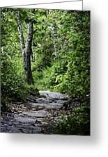 Pisgah Path Greeting Card