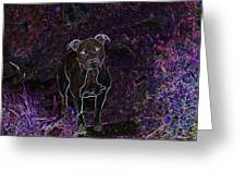 Pitty In Purple  Greeting Card by Travis Crockart
