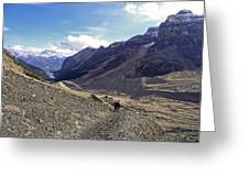 Plain Of Six Glaciers Trail - Lake Louise Canada Greeting Card