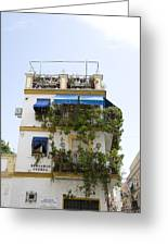 Plant Covered House In Triana Seville Greeting Card