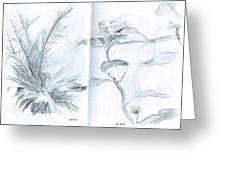 Plant Sketches Greeting Card