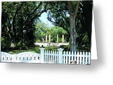 Plantation River Road Greeting Card