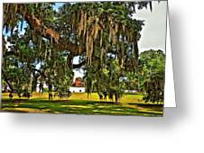 Plantation Greeting Card by Steve Harrington
