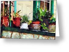 Plants On Porch Greeting Card