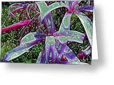 Plasticized Cape Lily Digital Art Greeting Card by Merton Allen