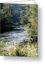 Platte River Greeting Card
