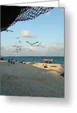 Playing In Playa Greeting Card