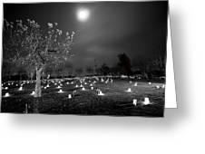 Pleasant Hill Luminaries Greeting Card