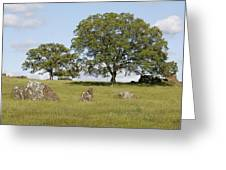 Pleasant Hillside Greeting Card