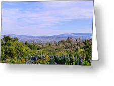 Pleasanton Preserve Greeting Card