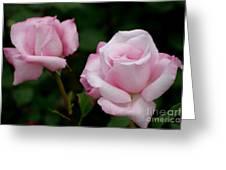 Pleasurable Pink Greeting Card