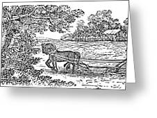Ploughing, 19th Century Greeting Card by Granger