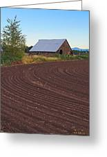 Plow Designs And A Barn Greeting Card