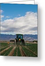 Plowing Field Greeting Card