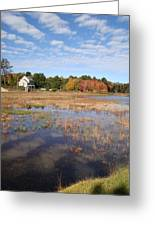 Plymouth Cranberry Bog Greeting Card by Mark Haley