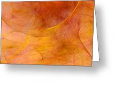 Poetic Emotions Abstract Expressionism Greeting Card