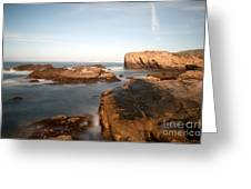 Point Lobos Number Three Greeting Card