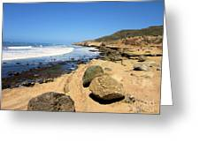 Point Loma Tidepools Greeting Card