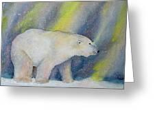 Polar Lights Greeting Card