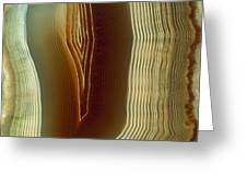 Polished Slice Of Agate Greeting Card