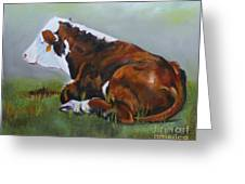 Polled Herford Baby 2 Greeting Card