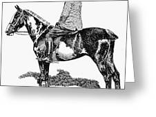 Polo, 1891 Greeting Card