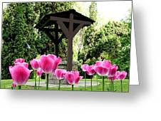 Polson Park Well Greeting Card