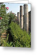 Pompeii Columns 2 Greeting Card