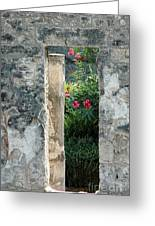 Pompii Columns 1 Pompeii Italy Greeting Card