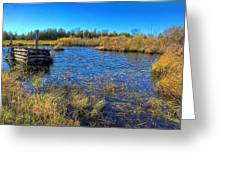 Pond 1 Today.psd Greeting Card