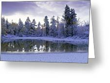 Pond And Fresh Snowfall, Near 70 Mile Greeting Card