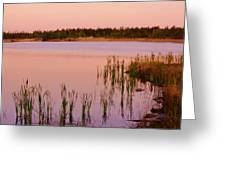 Pond At Dawn, Northwest Territories Greeting Card