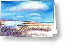 Pond At South Cape Beach Greeting Card