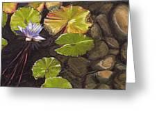 Pond Flower Greeting Card