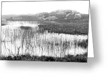 Pond In Tha North Of Ireland Greeting Card