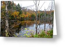 Pond On Limekiln Road Greeting Card