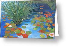 Pond Revisited Greeting Card