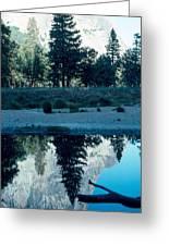 Ponderosa Reflections Greeting Card