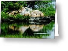 Pool In Marsh At Mystic Ct Greeting Card