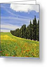 Poppies And Wild Flowers In Wheat Field Greeting Card