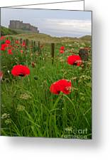 Poppies By The Roadside In Northumberland Greeting Card