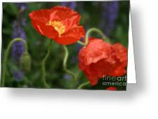 Poppies With Impressionist Effect Greeting Card