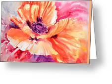 Poppy Fiesta Greeting Card