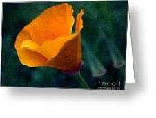 Poppy Glowing Greeting Card by Bobbi Feasel