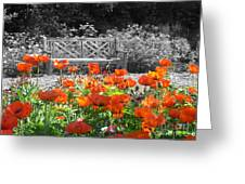 Poppy Seed Bench Greeting Card