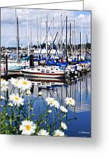 Port Orchard Water Front Marina  Greeting Card