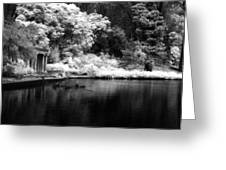 Portals Of The Past - Golden Gate Park Greeting Card