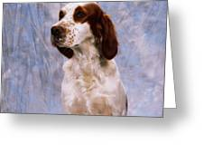 Portrait Of Irish Red And White Setter Greeting Card